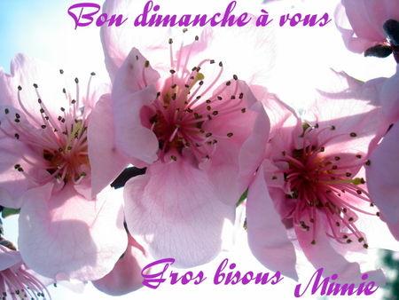 Petit_mots_fleurs_de_p_chers