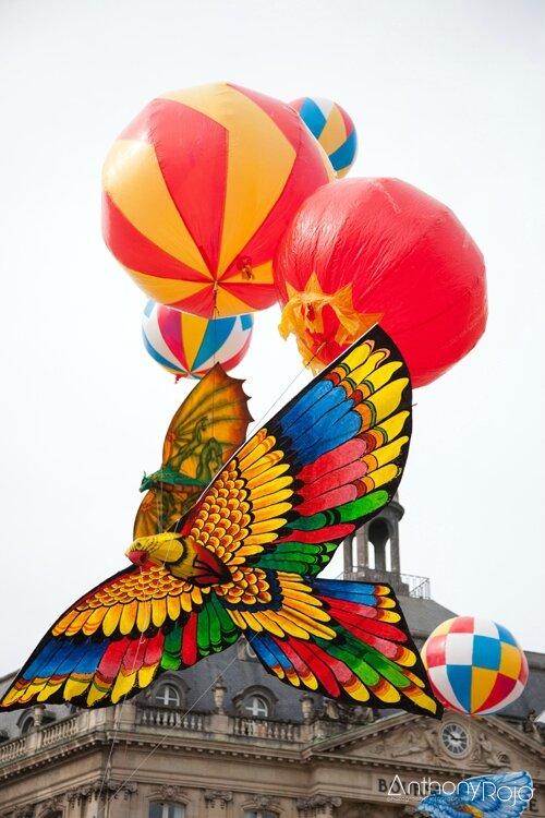 Carnaval_des_deux_rives_2014_©anthonyrojo-20