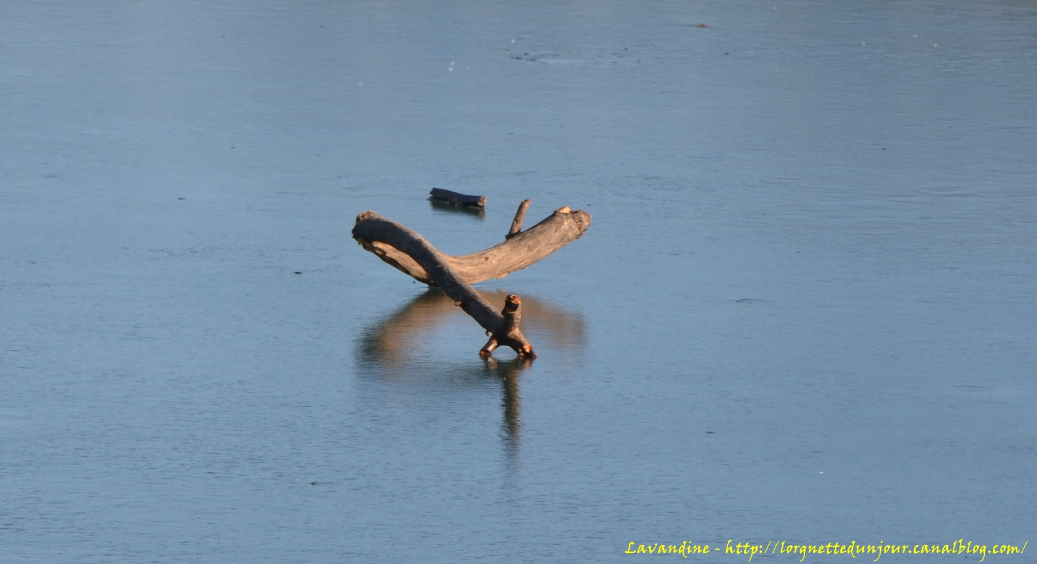 07/01/15 : Au bord du canal