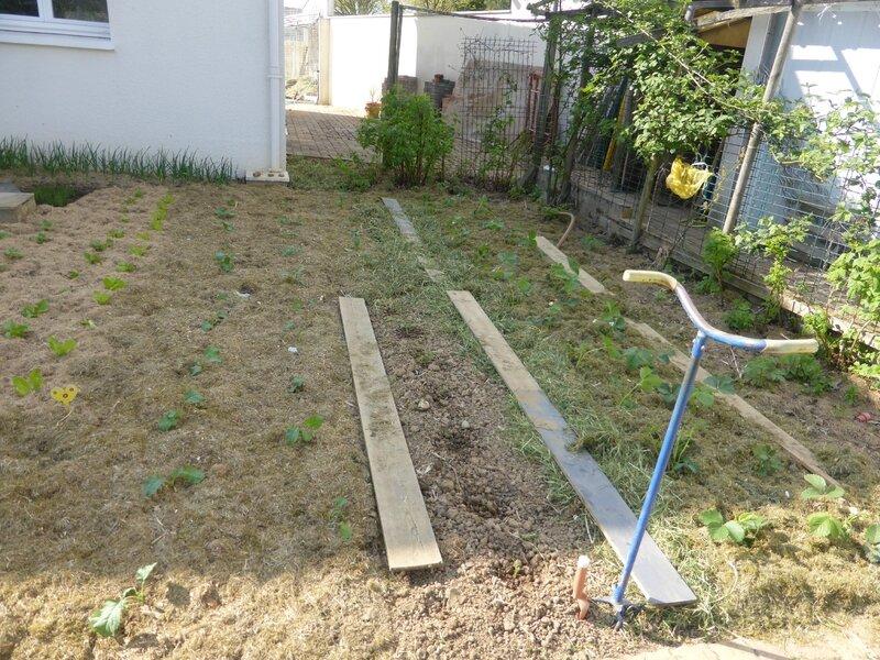 20-jardin est (2)