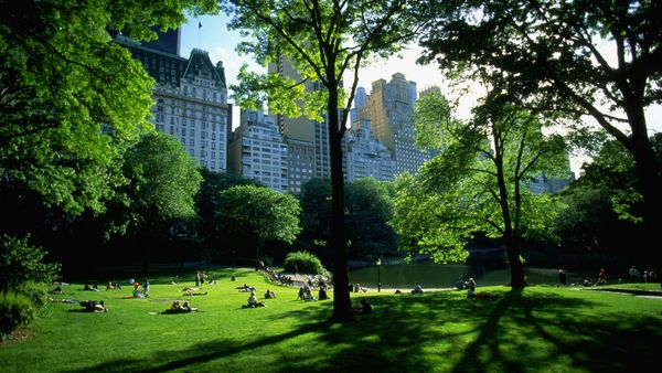 Central Park view - wallpaper-fonds-decran-