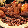 La supply chain du cacao