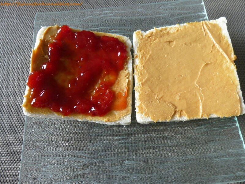 Jelly and peanut butter sandwich (7)