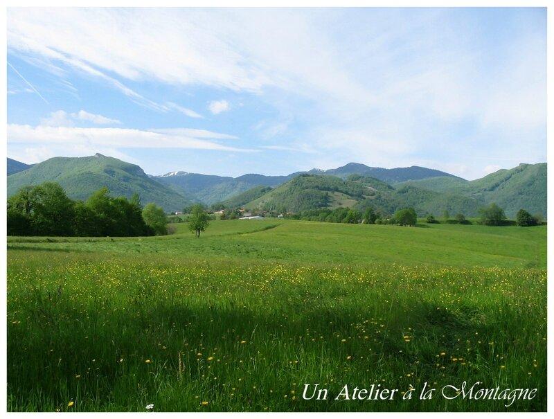 Prairies autour de La Serre