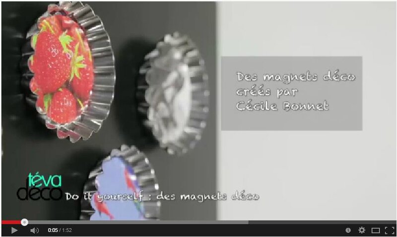 video magnets teva
