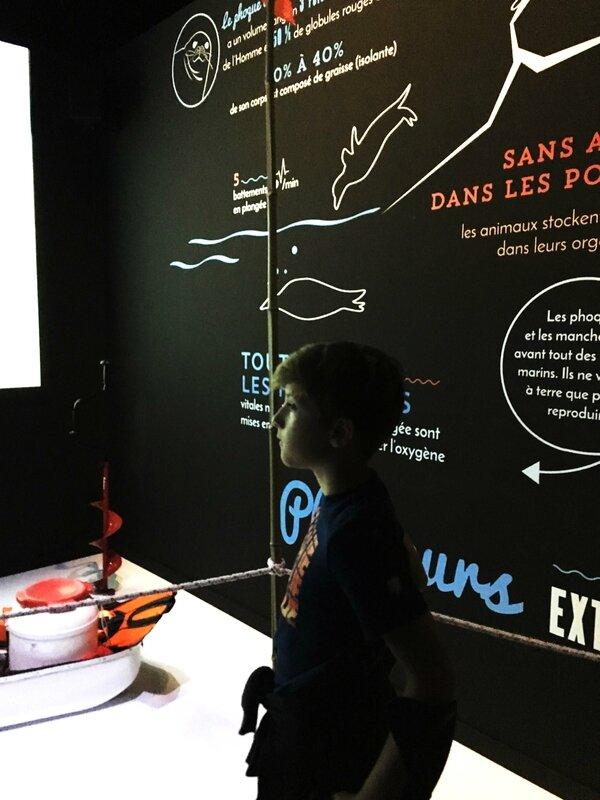 6-musee-des-confluences-exposition-antartica-lyon