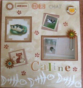 calinejanvier2008
