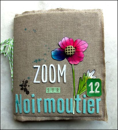 Mini Zoom sur Noirmoutier (01)
