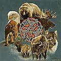 Voyage au tambour : à la rencontre de son animal allié