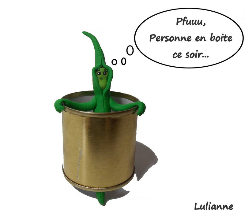 lulianne-conserve-haricot