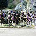 Cavalerie ibere