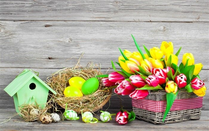 Easter-colorful-eggs-tulips-flowers_m