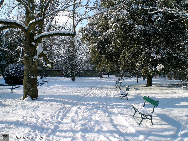 Bancs sous la neige au jardin botanique de Tours