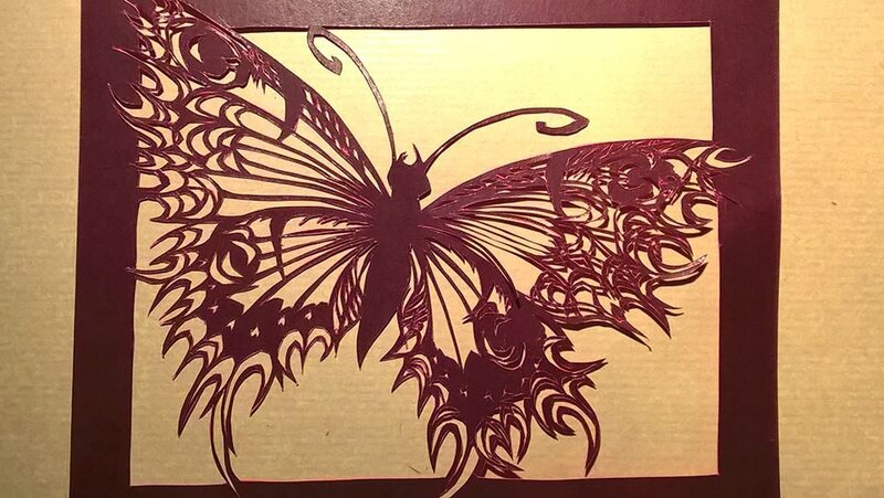 papillon noir et rose
