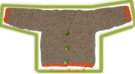 Gilet_tricote