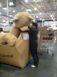 costco ours2