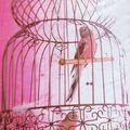Les cages à oiseaux de décoration