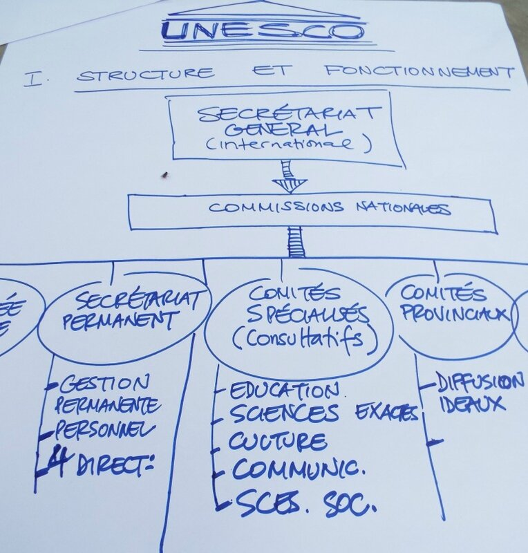 Atelier ARTERIAL NETWORK -Convention UNESCO - RDC 2014 (2)