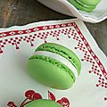 Macaron menthe chocolat