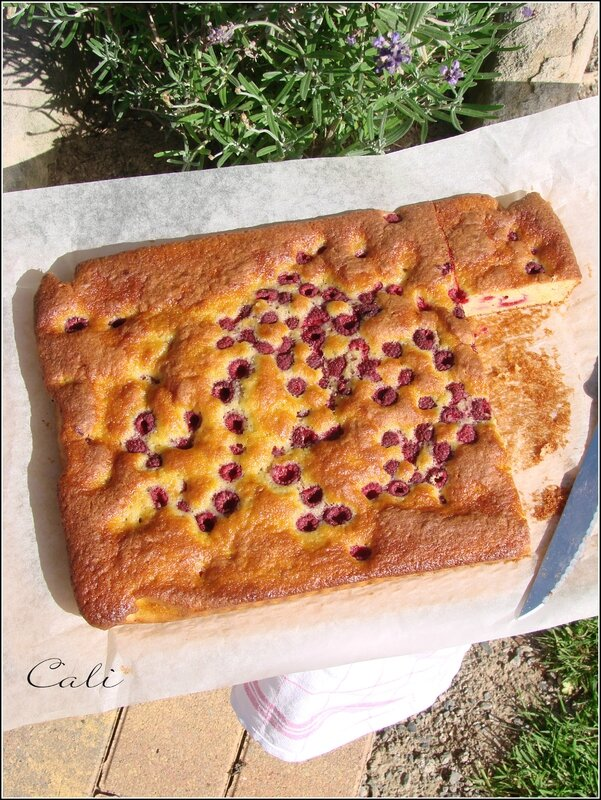 Gâteau Banane Framboise 004