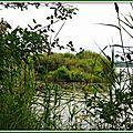 Lac 29061521