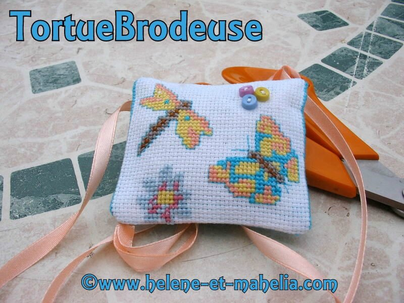 143 tortuebrodeuse