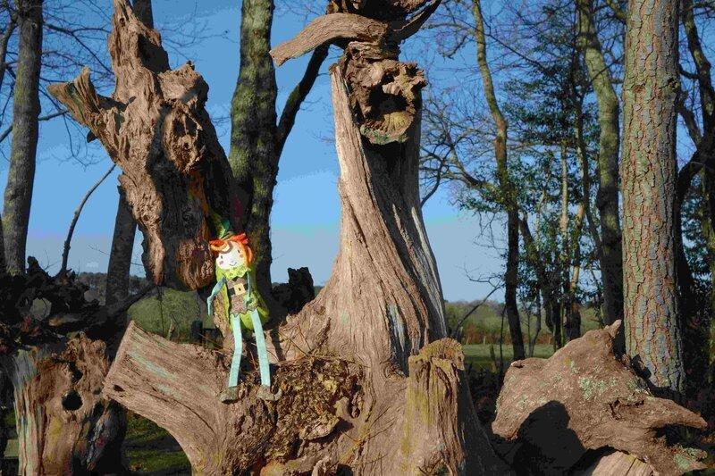 doudou korrigan en forêt