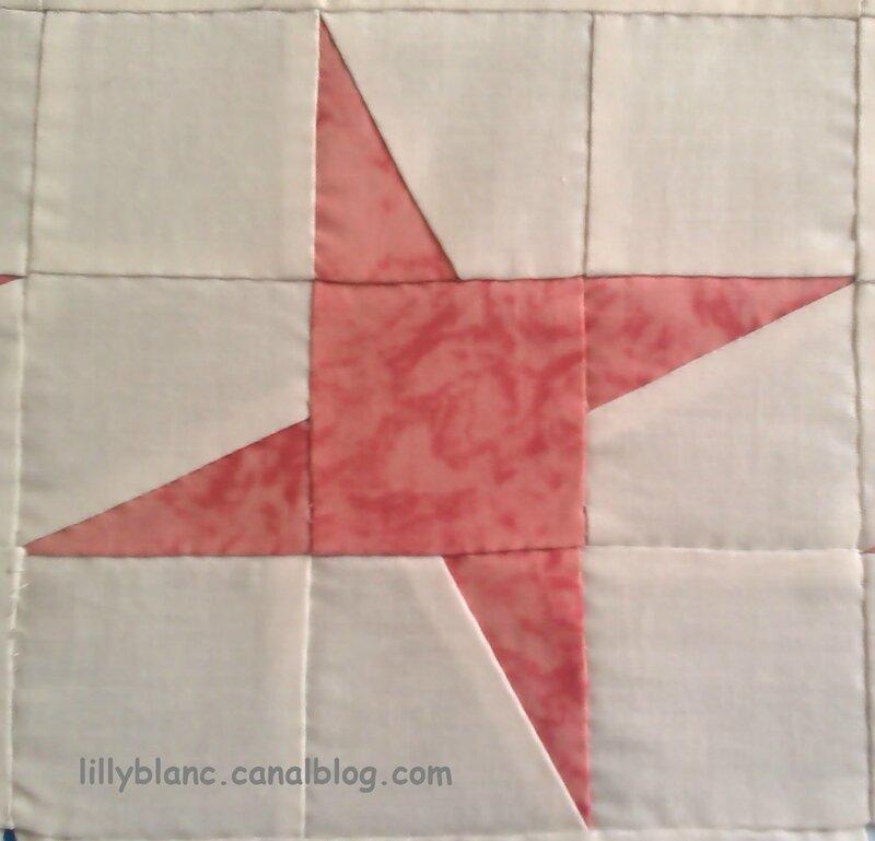 10 La grande étoile 15x15cm