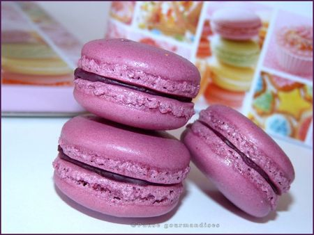 macarons_fruits_rouges_parfum_violette__52_