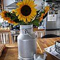Bonjour, un peu de soleil dans ma cuisine...