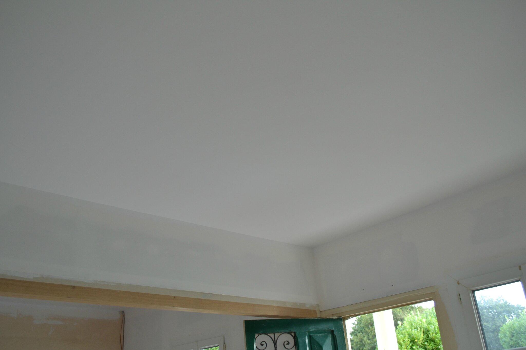 Peinture : Sous Couche + Plafonds