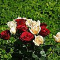 Ladies and roses