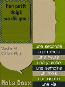 ViolaineM-cartonPL2 ap
