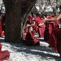 Les moines debattent de sujets philosophiques