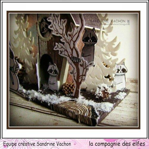 Sandrine VACHON dt LA COMPANGIE DES ELFES 24 nov (7)