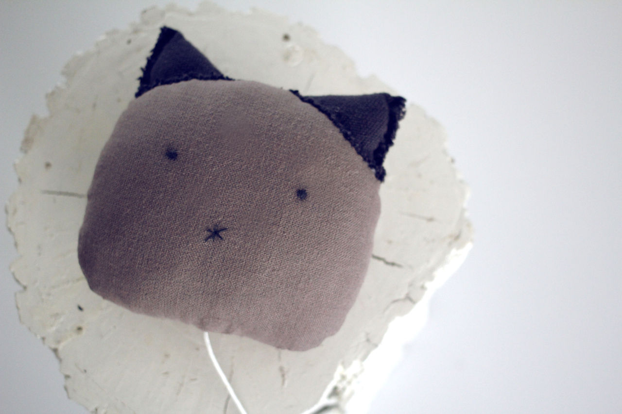 gatos___1