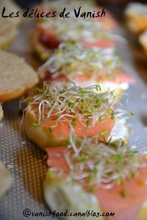 mini burger-graines germées-luzerne-saumon