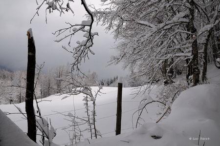 paysage_neige_25