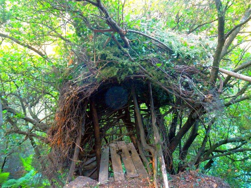orbe dans la cabane pipi