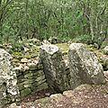 dolmen Pey Cervier (5)