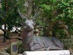 07_02_16_37_Nara_Kasuga_Tashai_Shrine