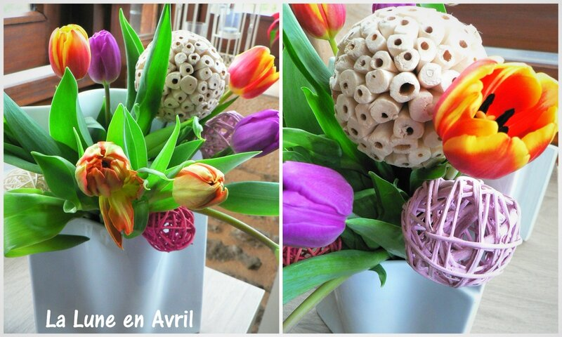 Tulipes avril 2016