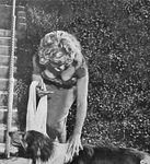 1952_08_03_RAP_13_lassie_070_1