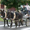 7ème route des Bourriques à Saint Menges (08)
