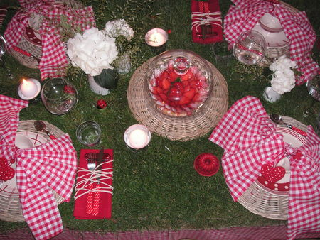 table_picnic_058