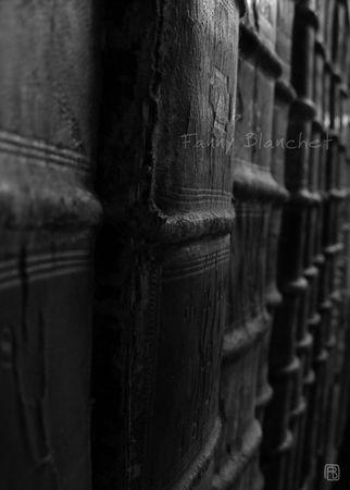 livresarchivesweb