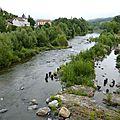P1050521_la Loire