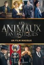 Kogge_Animaux fantastiques_Un film magique