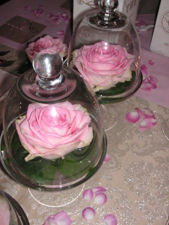 table_rose_f_te_des_m_res_008