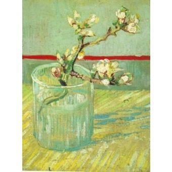 branches-damandier-en-fleur